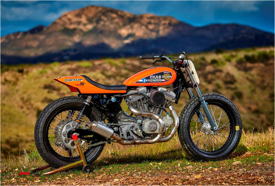 Mule Motorcycles, Richard Pollock: Custom bike builder